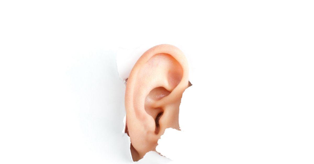 """ניתוח הצמדת אוזניים - ד""""ר יעקב בר"""